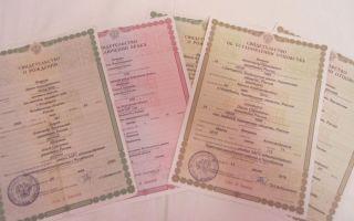 Основные документы, необходимые для подачи на алименты