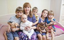 Особенности оформления пенсии многодетным матерям в 2018 году