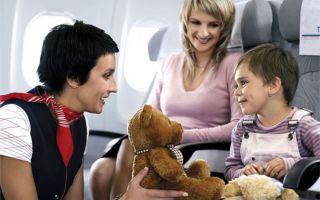 Доверенность на сопровождение несовершеннолетнего ребенка по России: правила, форма, значение