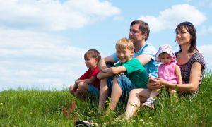 Порядок применения земельного сертификата многодетным (СПб, 2020 год)