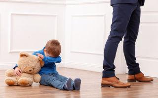 Процедура лишения родительских прав отца по причине неуплаты алиментов