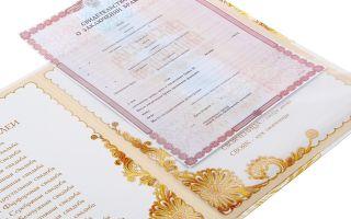 Причины и процедура признания брака недействительным