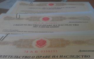 Особенности и порядок получения свидетельства о праве на наследство