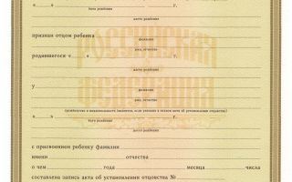 Свидетельство об установлении отцовства: предназначение, особенности, срок выдачи