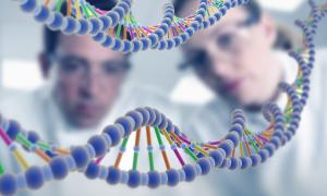 Места, где можно сделать тест ДНК на отцовство
