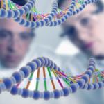 Оплата генетической экспертизы