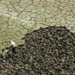 Отмена права на пользование земельным участком, при снижении плодородности земли по вине владельца