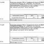 Пример квитанции на оплату госпошлины