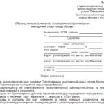 Заявление на оформление удостоверения многодетной семьи