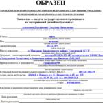 Образец заявления на выдачу сертификата на материнский капитал